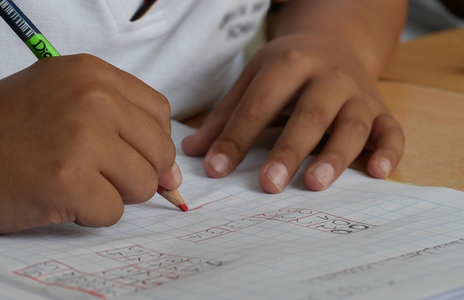 Infancia programas educación infantil